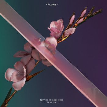 Flume - Never Be Like You (feat. Kai) (Explicit)