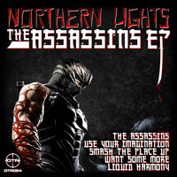 Northern Lights - The 'Assassins'