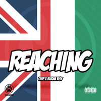 Chip - Reaching (Explicit)