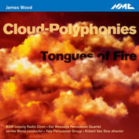 James Wood - James Wood: Cloud-Polyphonies & Tongues of Fire