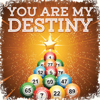 Paul Anka - You Are My Destiny - Single