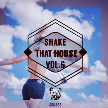 Various Artists - Shake That House, Vol. 6