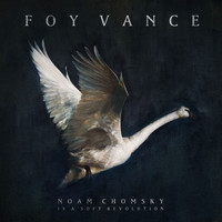 Foy Vance - Noam Chomsky Is A Soft Revolution