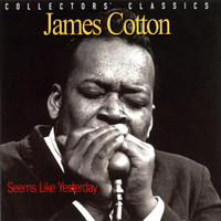 James Cotton - Seems Like Yesterday (Live)