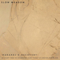 Slow Meadow - Hananel's Recovery
