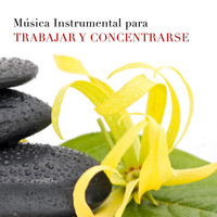 Results of your search for como high quality music for Musica clasica para trabajar en oficina
