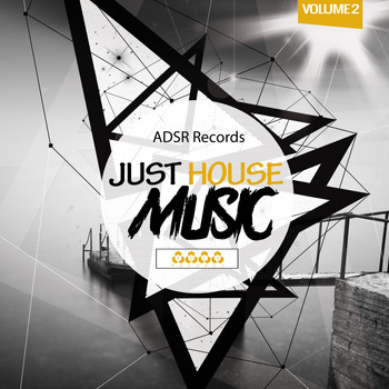 Various Artists - Just House Music, Vol. 2