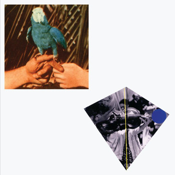 Andrew Bird - Are You Serious (Deluxe Edition)