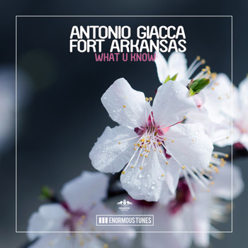 Antonio Giacca & Fort Arkansas - What U Know