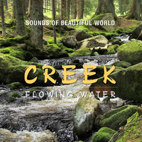 Sounds of Beautiful World - Flowing Water: Creek (Nature Sounds for Relaxation, Meditation, Healing & Sleep)