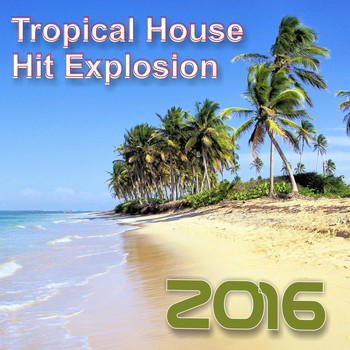 Various Artists - Hit Explosion: Tropical House 2016