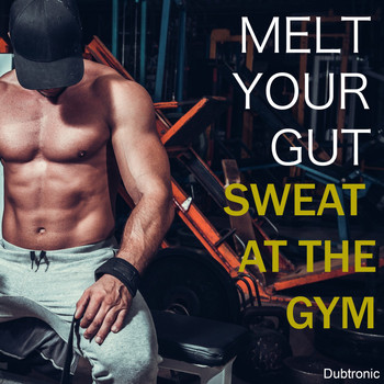 Various Artists - Melt Your Gut Sweat at the Gym