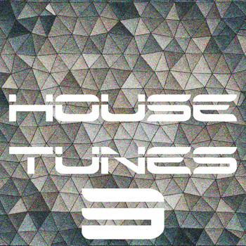Various Artists - House Tunes, Vol. 2