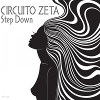 Circuito Zeta - Step Down