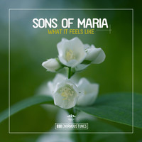 Sons of Maria - What It Feels Like