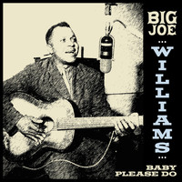 Big Joe Williams - Big Joe Williams - Baby Please Do