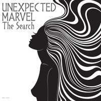 Unexpected Marvel - The Search