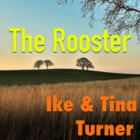 Ike & Tina Turner - The Rooster