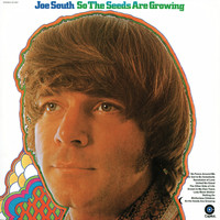 Joe South - So The Seeds Are Growing