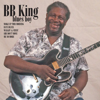 B B King - BB King Blues Boy