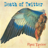 Paul Taylor - Death of Twitter