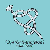Peter Bjorn And John - What You Talking About?