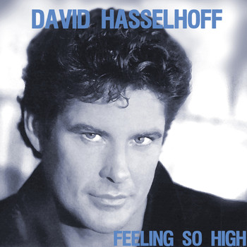 David Hasselhoff - Feeling So High