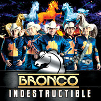 Bronco - Indestructible