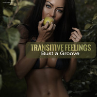 Transitive Feelings - Bust a Groove