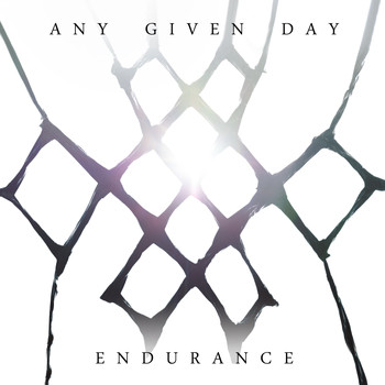 Any Given Day - Endurance