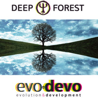 Deep Forest - Somewhere