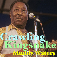 Muddy Waters - Crawling Kingsnake