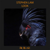 Stephen Lam - Look
