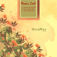 House Cat - Academics