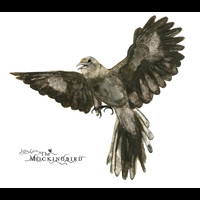 John Zorn - The Mockingbird
