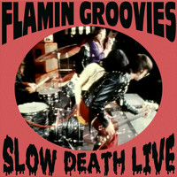 The Flamin' Groovies - Slow Death Live