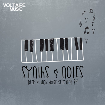 Various Artists - Synths and Notes, Vol. 29