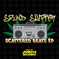 Sound Shifter - Scattered Beats