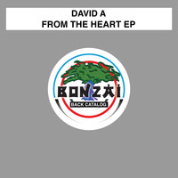 David A - From The Heart EP