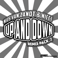 Nils van Zandt & NICCI - Up and Down Remix Pack 2