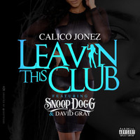 Snoop Dogg - Leavin' this Club (feat. Snoop Dogg & David Gray)