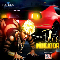 Spice - Indicator - Single