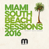 David Harness - Miami South Beach Sessions 2016 Mixed by David Harness