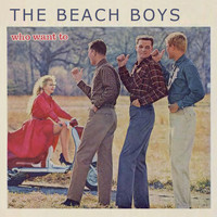 The Beach Boys - Who Want To