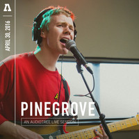 Pinegrove - Pinegrove on Audiotree Live