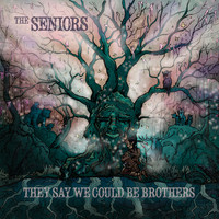 The Seniors - They Say We Could Be Brothers