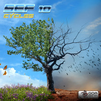 Sef10 - Cycles