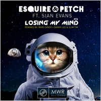 Esquire & Petch feat. Sian Evans - Losing My Mind: Remixes