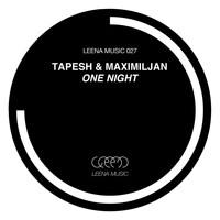 Tapesh & Maximiljan - One Night