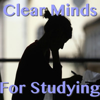 Various Artist - Clear Minds For Studying